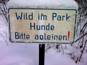 Wild im Park_Spookyfilm