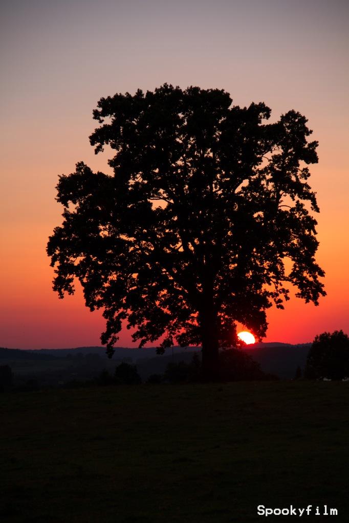 Sonnenuntergang und Gegenlicht-Aufnahme