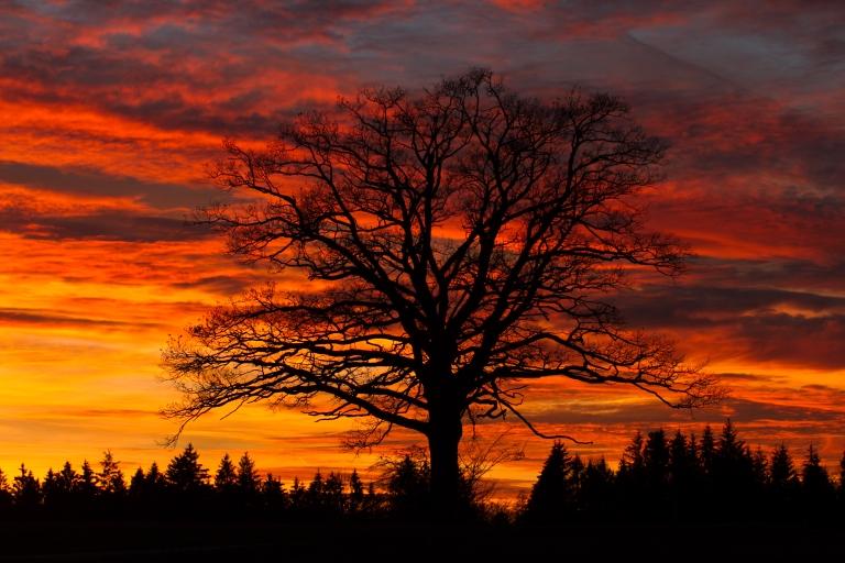 Wo Himmel und Erde sich berühren...